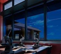 Затъмняващи се прозорци